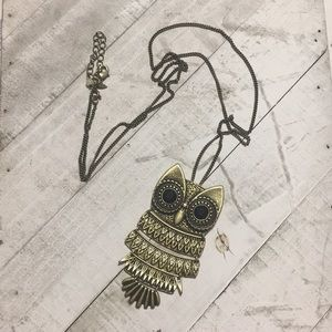 Jewelry - Owl necklace. Long chain